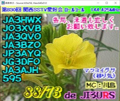 2020-08-10-3.jpg